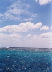 Anaïs-voyage-dans-son-assiette_001_Queensland_04