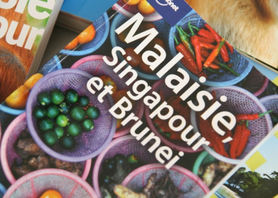 Anais-blogtrotter-guide-voyage-lonely-planet-malaisie
