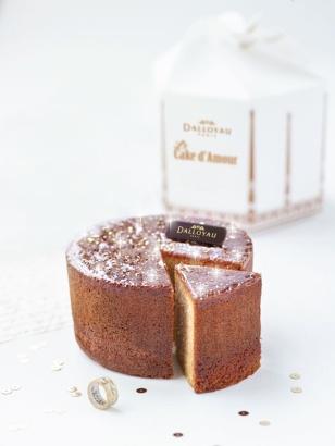 Cake d'amou peau d'ane 2