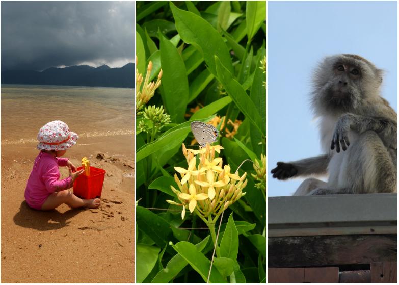 LDdA-Voyage-Malaisie-Tioman-island