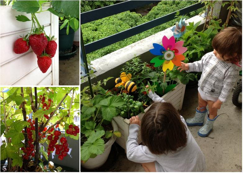 LDdA-notre-petit-coin-de-verdure_06-ete-fruits