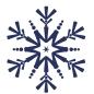 LDdA_Anniversaire-reine-des-neiges-Flocon-1