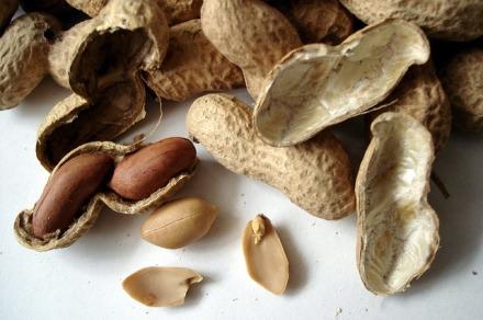 LDdA_Huiles-végétales-arachides