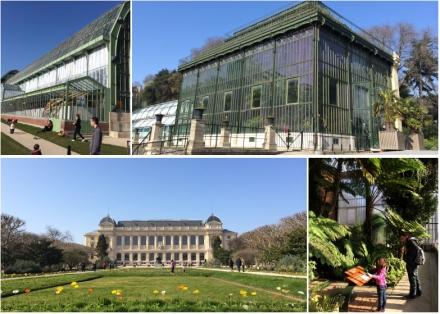 Expo-paris-mille-et-une-orchidee-jardin-des-plantes-08