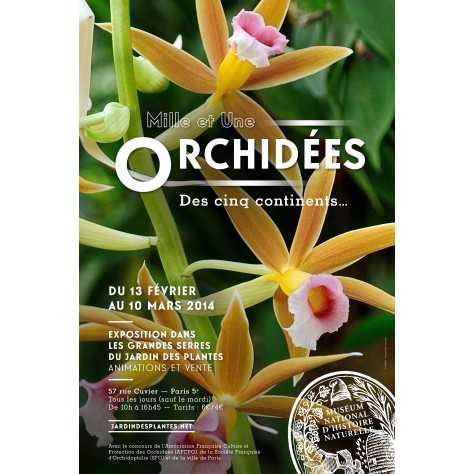 Stunning Orchidee Au Jardin Des Plantes Images - Amazing House ...