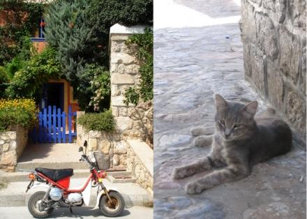 LDdA_Anais-voyage-dans-son-assiette-GRECE-golf_saronique-Poros
