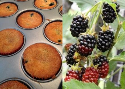 LDdA_Recette-muffin-mures-2