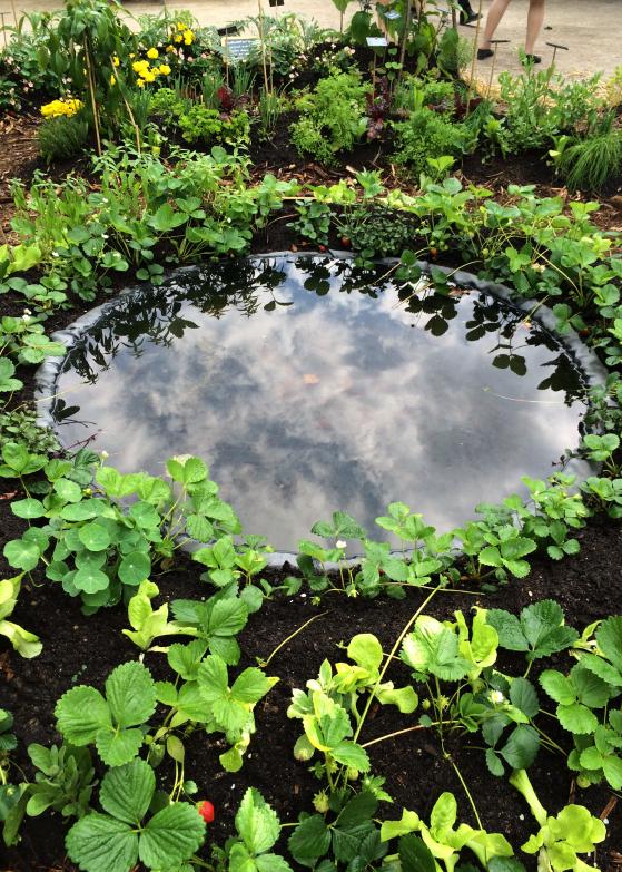 LDdA_Jardins-Jardin-Tuileries-09-esprit-jardin-comestible