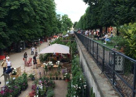 LDdA_Jardins-Jardin-Tuileries-19