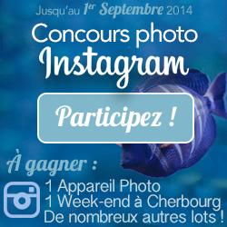 la-cite-de-la-mer_pave-web-jeu-instagram