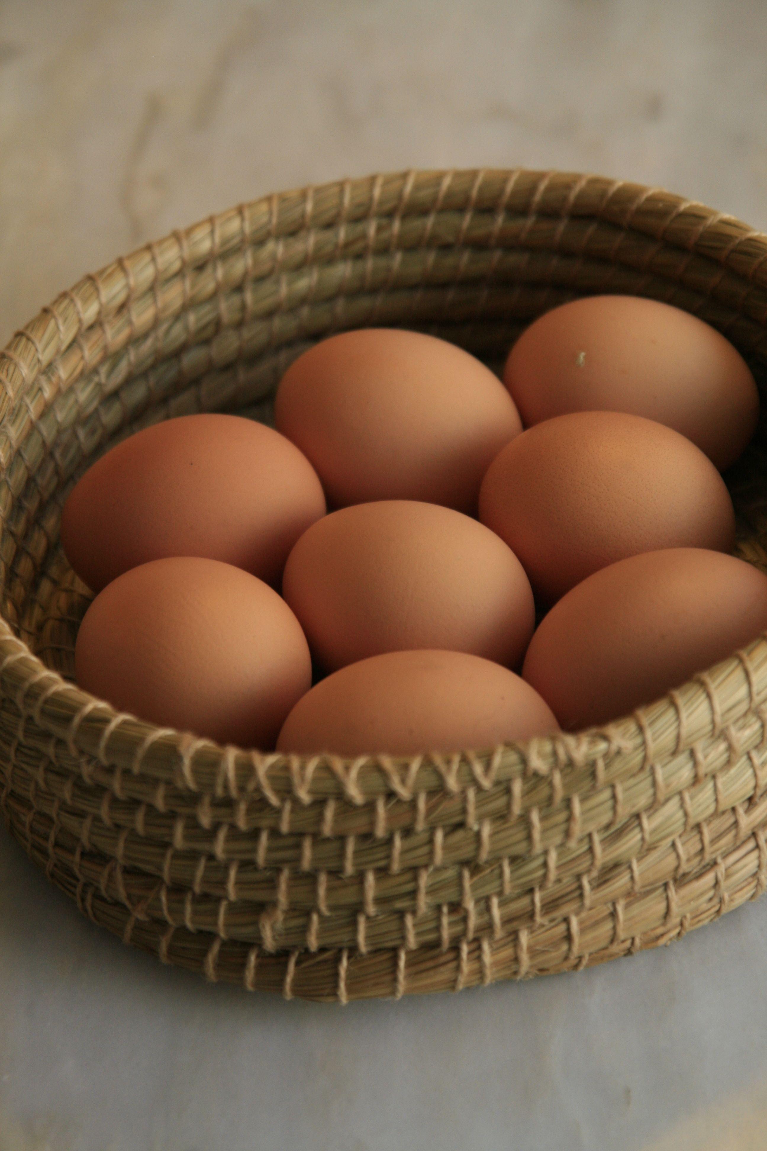 Quelques Recettes Pour Bebe A Base D œuf Les Delices D Anais