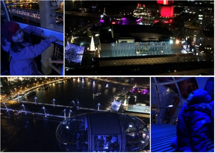 Anais_blogtrotteur-London_LondonEye-nuit