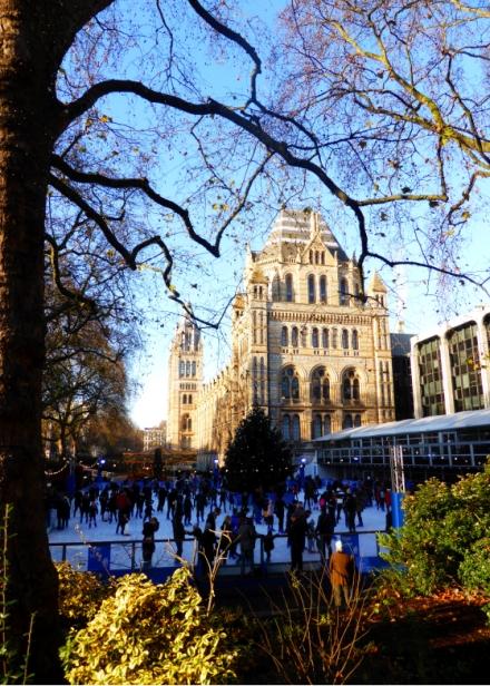 Anais_blogtrotteur-London_NHM