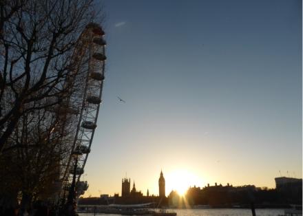 Anais_blogtrotteur-London_River_cruise_london-eye