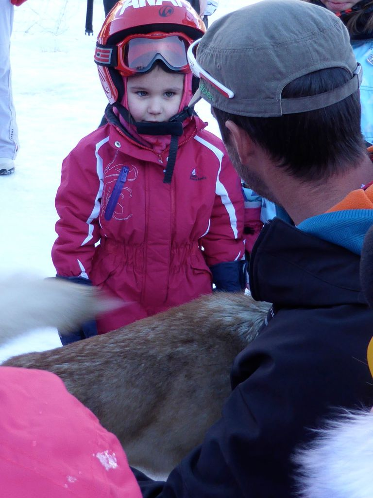 Lesdelicesdanais_Baby_traineau_Mushing_Addict_06