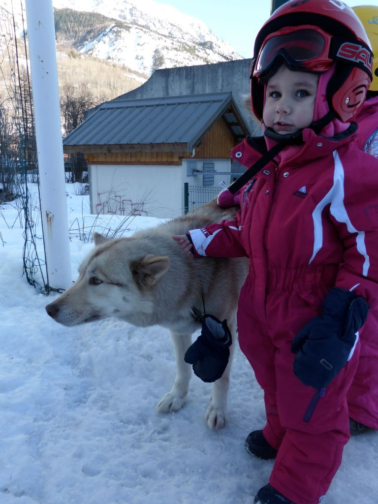 Lesdelicesdanais_Baby_traineau_Mushing_Addict_07