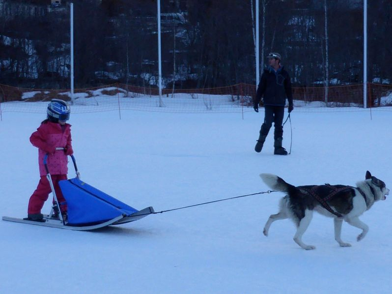 Lesdelicesdanais_Baby_traineau_Mushing_Addict_09