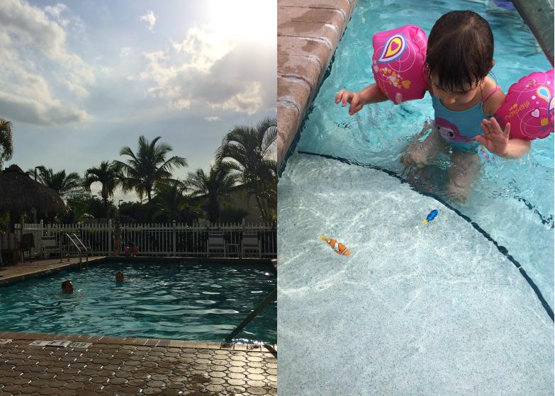 LDdA_Anais-voyage-dans-son-assiette-USA_Everglades_Florida_city