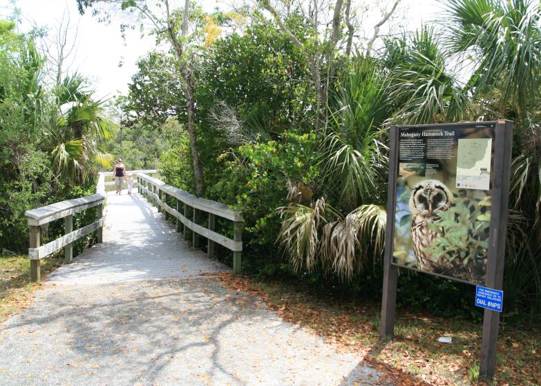 LDdA_Anais-voyage-dans-son-assiette-USA_Everglades_Mahogany_Hammock_04