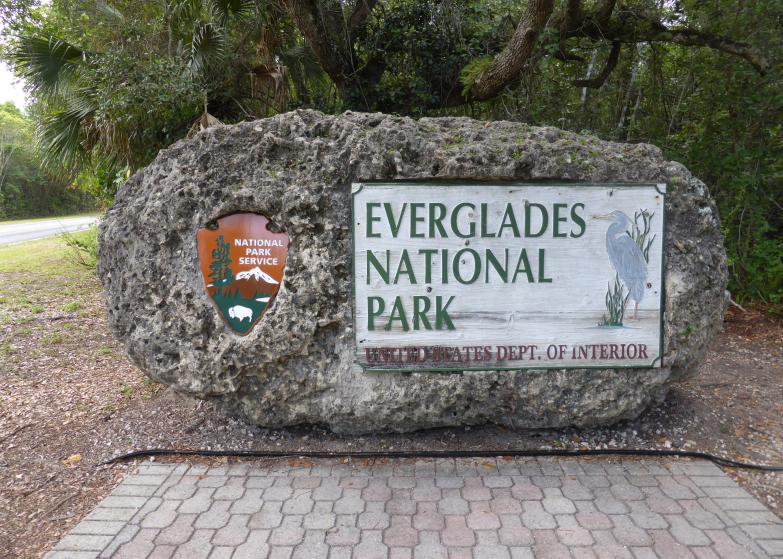 LDdA_Anais-voyage-dans-son-assiette-USA_Everglades_national_park