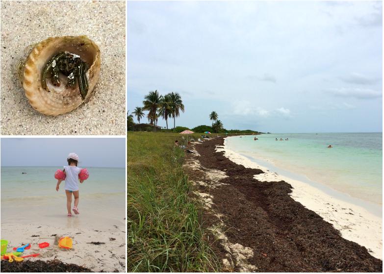 LDdA_Anais-voyage-dans-son-assiette-USA_Florida_bahia_honda_beach_01