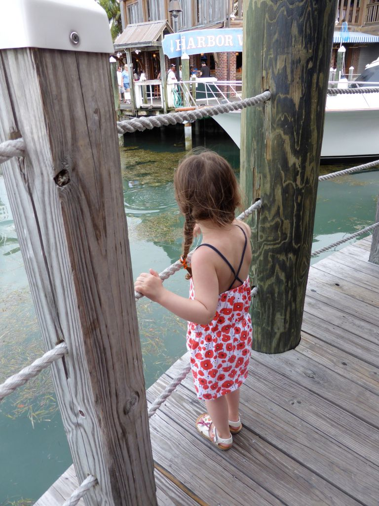 LDdA_Anais-voyage-dans-son-assiette-USA_Florida_Keys_West_Harbour