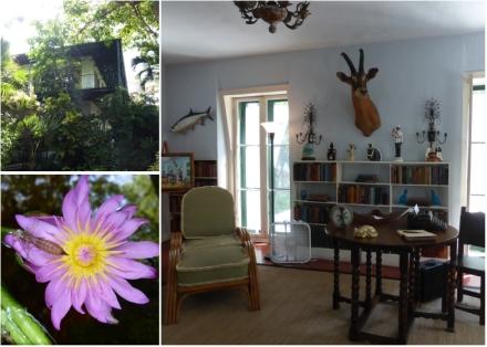 LDdA_Anais-voyage-dans-son-assiette-USA_Florida_Keys_West_Hemingway_house_3