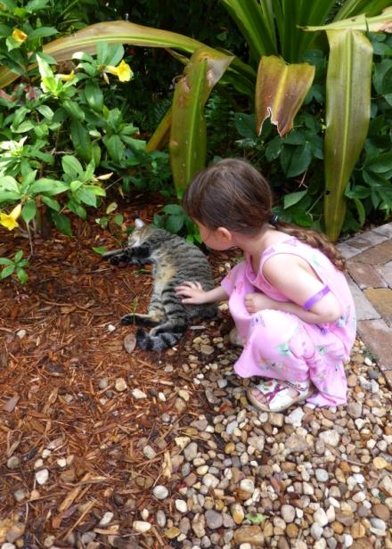 LDdA_Anais-voyage-dans-son-assiette-USA_Florida_Keys_West_Hemingway_house_4
