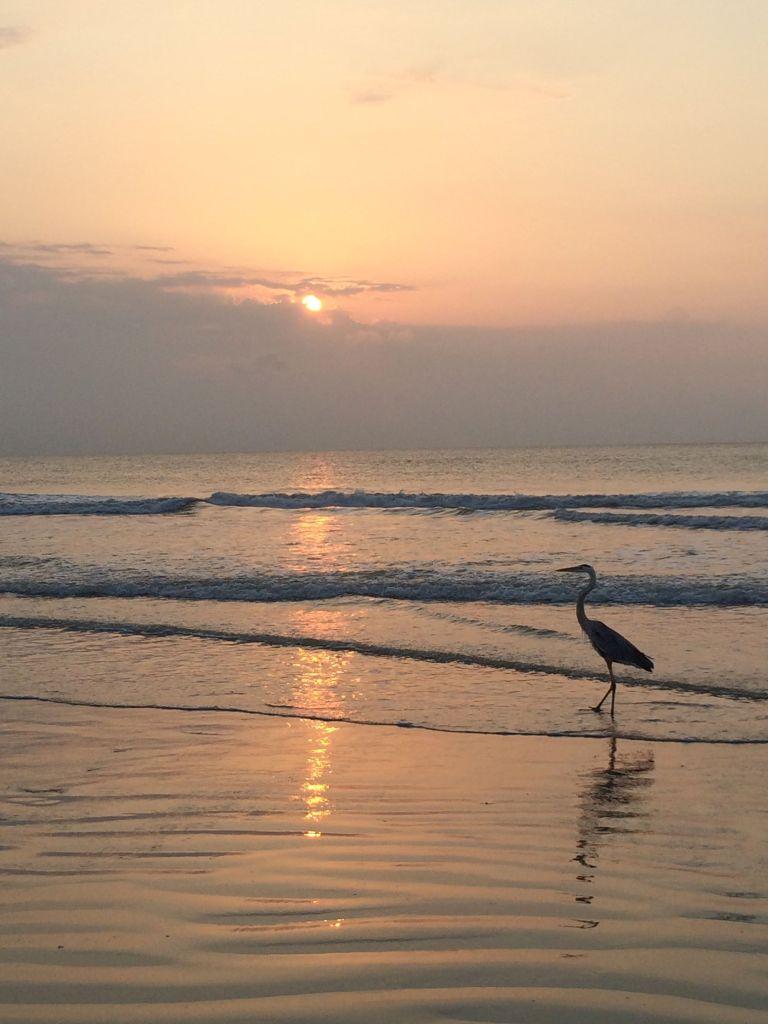 LDdA_Anais-voyage-dans-son-assiette_USA_Cocoa-Beach_07