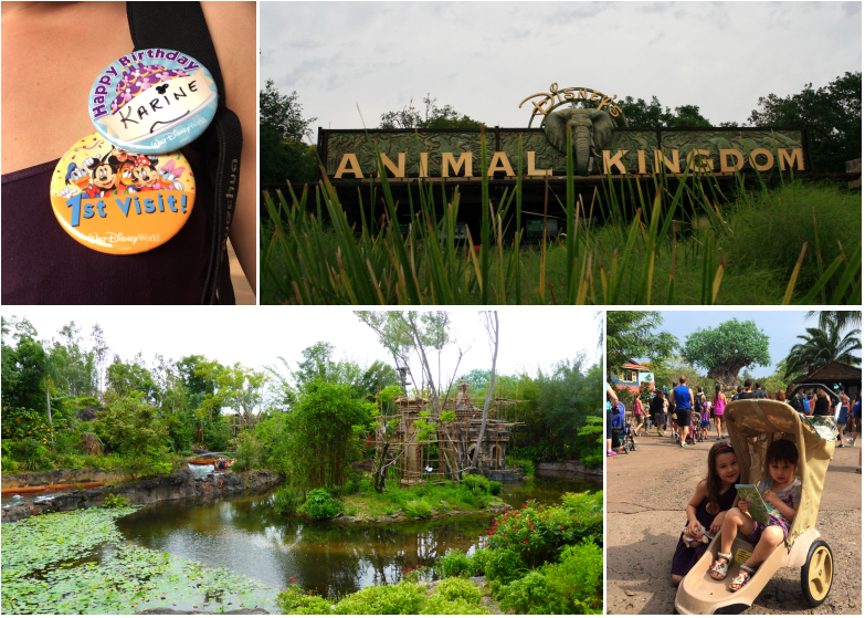 LDdA_Anais-voyage-dans-son-assiette_USA_Orlando_Animal_kingdom_01