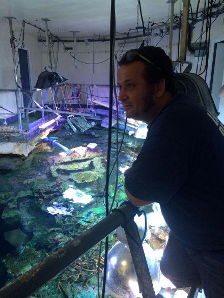La_cite_de_la_mer_Aquarium_visite_coulisse_10