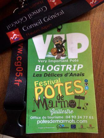 LDdA_Festival_PotesdeMarmots_J0_VIP