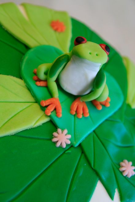 LDDA_Gateau_Anniversaire_Rainforest_Grenouille_Cakedesign