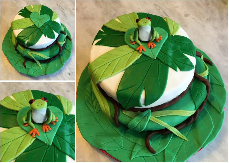 LDDA_Gateau_Anniversaire_Rainforest_Grenouille_Cakedesign_10