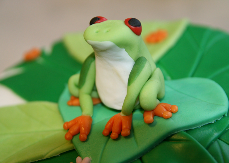 LDDA_Gateau_Anniversaire_Rainforest_Grenouille_Cakedesign_11