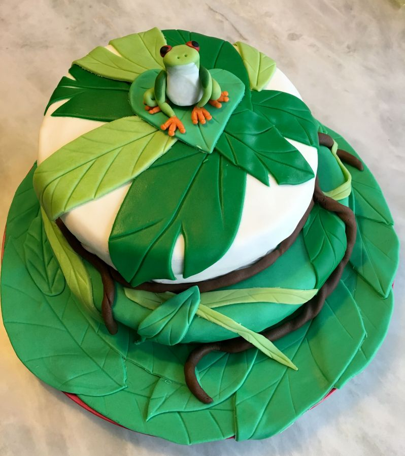 LDDA_Gateau_Anniversaire_Rainforest_Grenouille_Cakedesign_FINAL