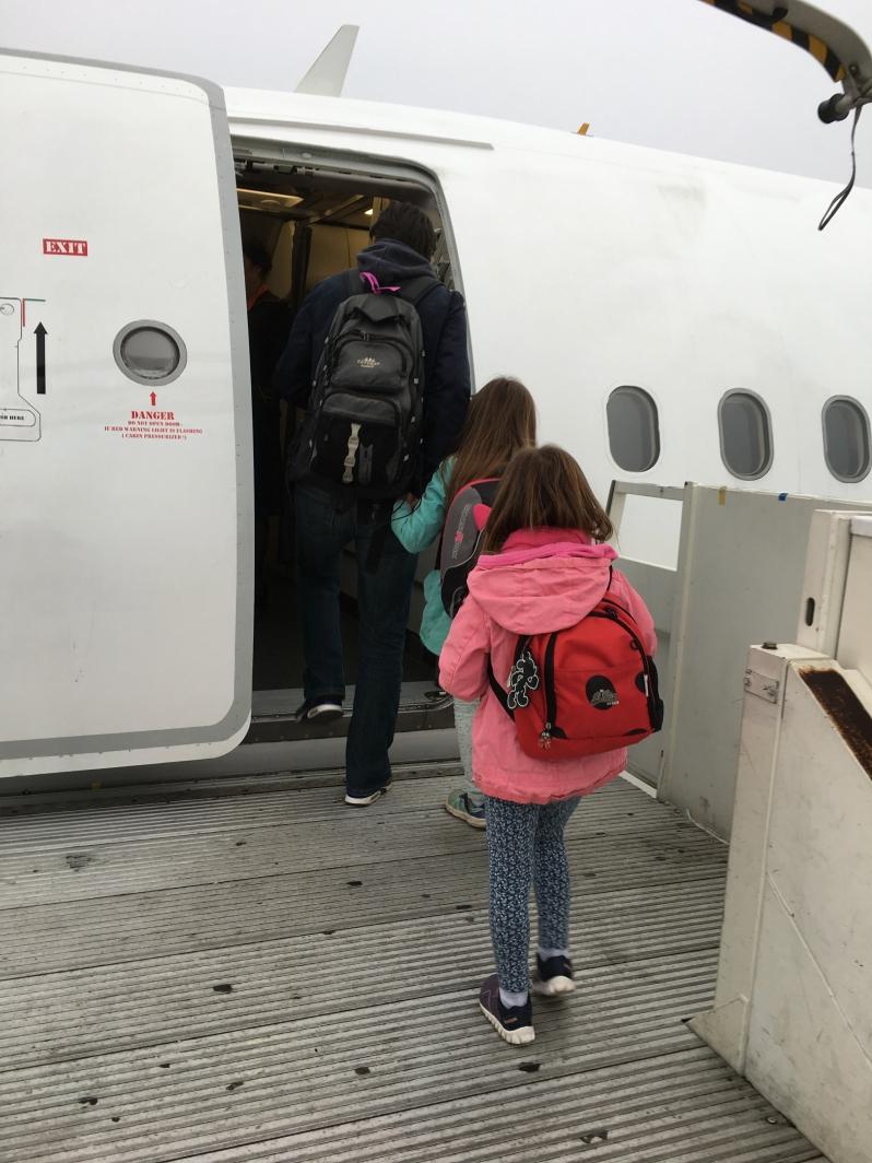 ldda_canaries_aeroport-paris-charles-de-gaulle