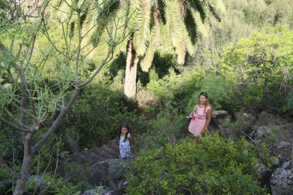 ldda_canaries_nord_jardin_botanique_03