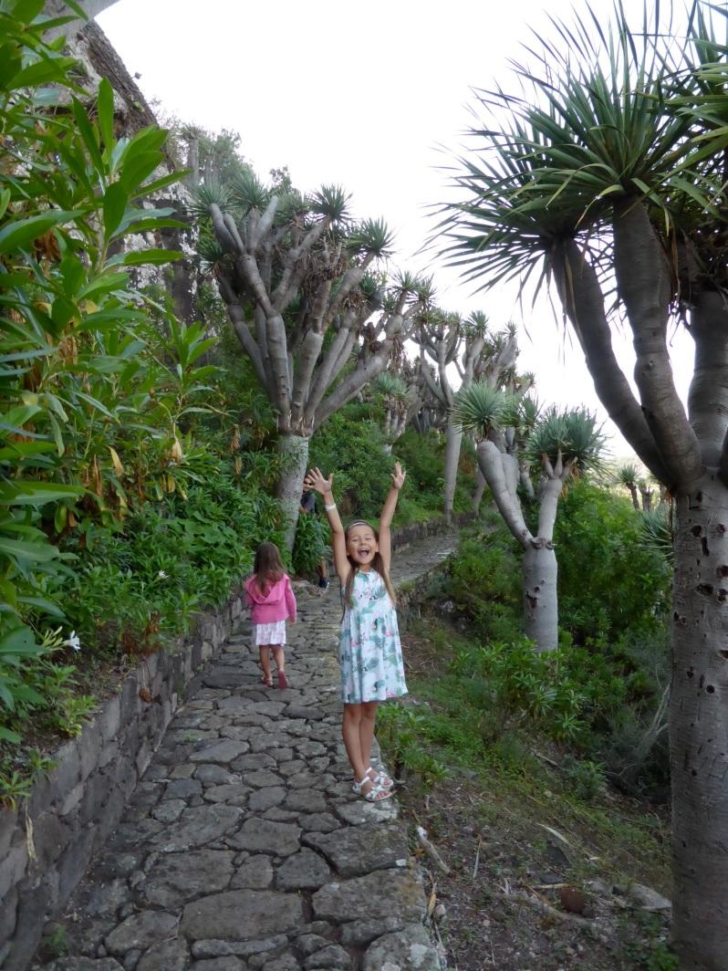 ldda_canaries_nord_jardin_botanique_dragons1