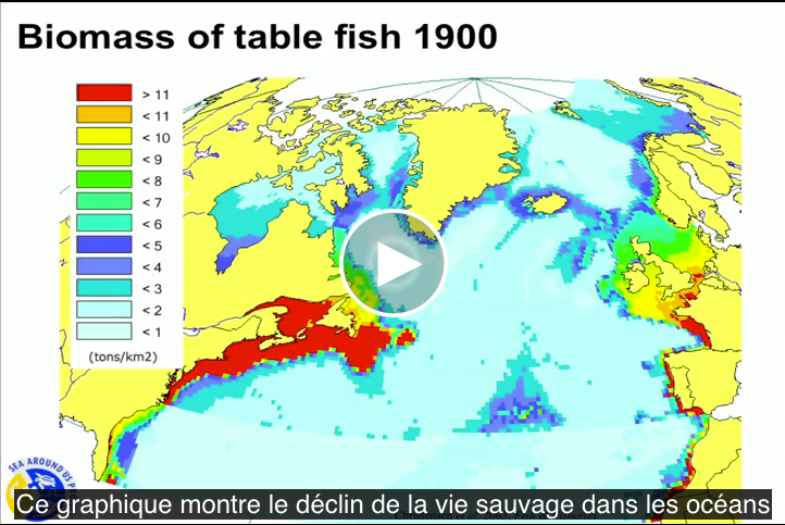 biomass-of-table-fish-1900